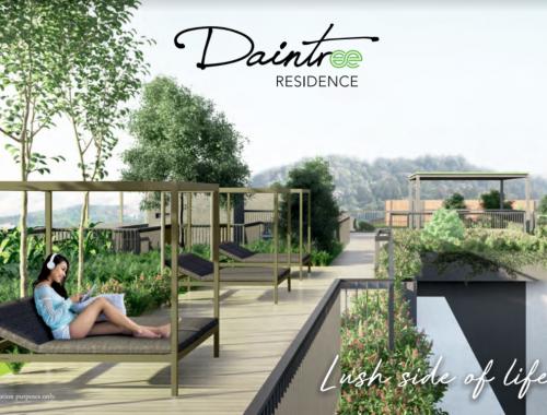 Daintree Residence Tree Top Park